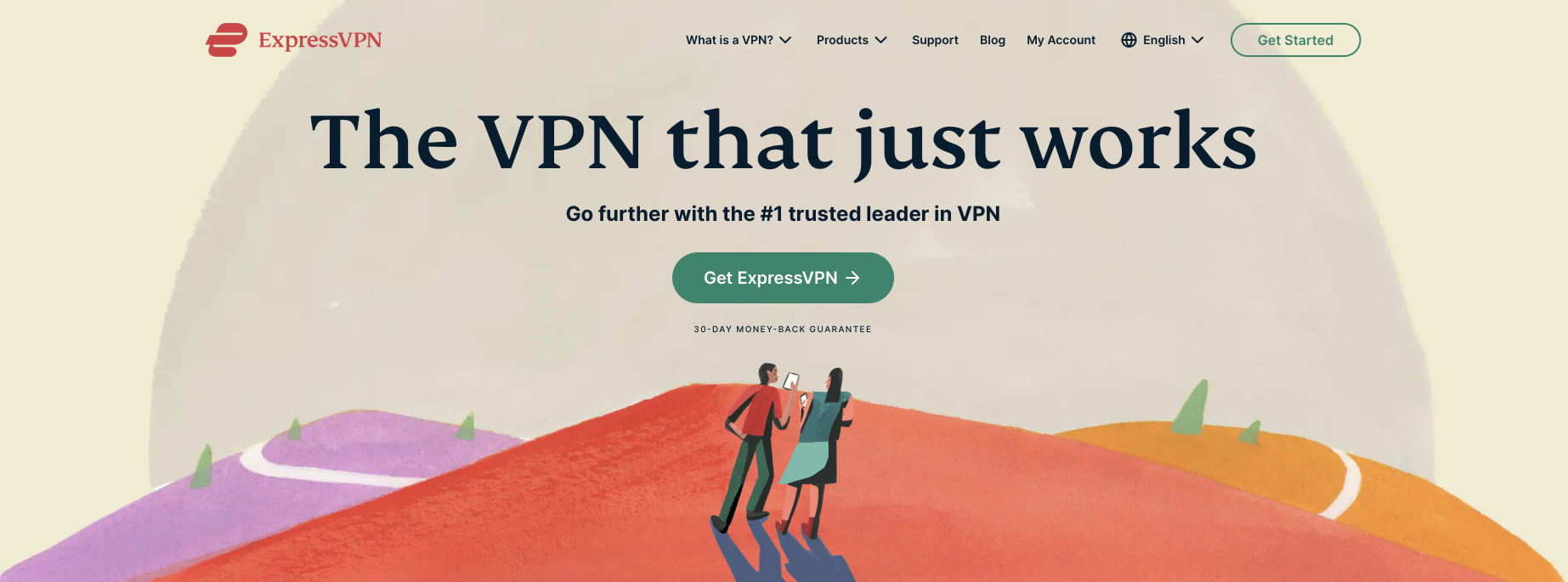 Consulting software: Express VPN